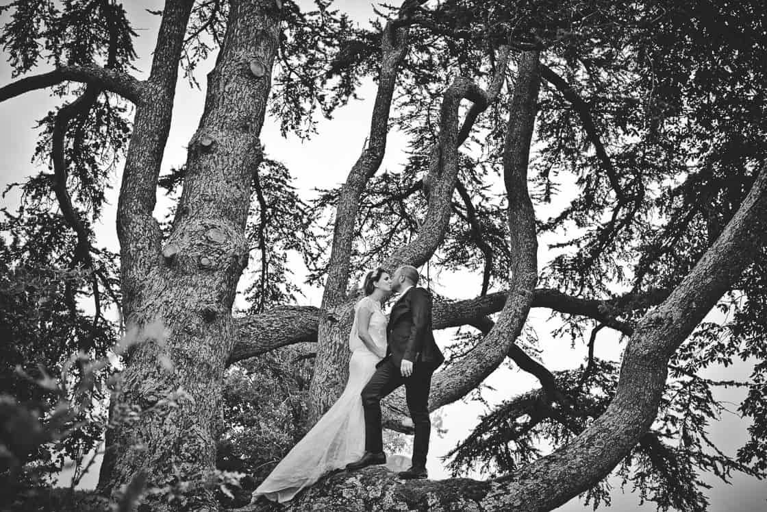 102-photo-dayafter-arbre_WEB